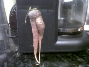 "Would you insure these carrot ""legs"" for a million bucks?"