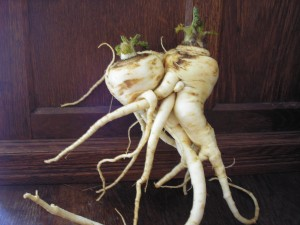 Passionate Parsnips: Can't you just hear the French accent?
