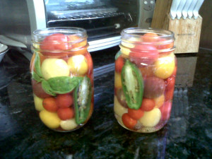 pickled tomatoes before lids