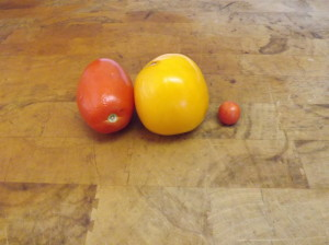 These are some of the last of the coastal tomatoes and the tiny one is the last from my garden.