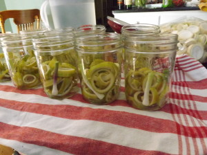 Dill, garlic, red pepper and alum are in the bottom of each jar